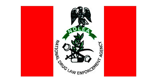 NDLEA arrests over 2,000 traffickers in 5 months