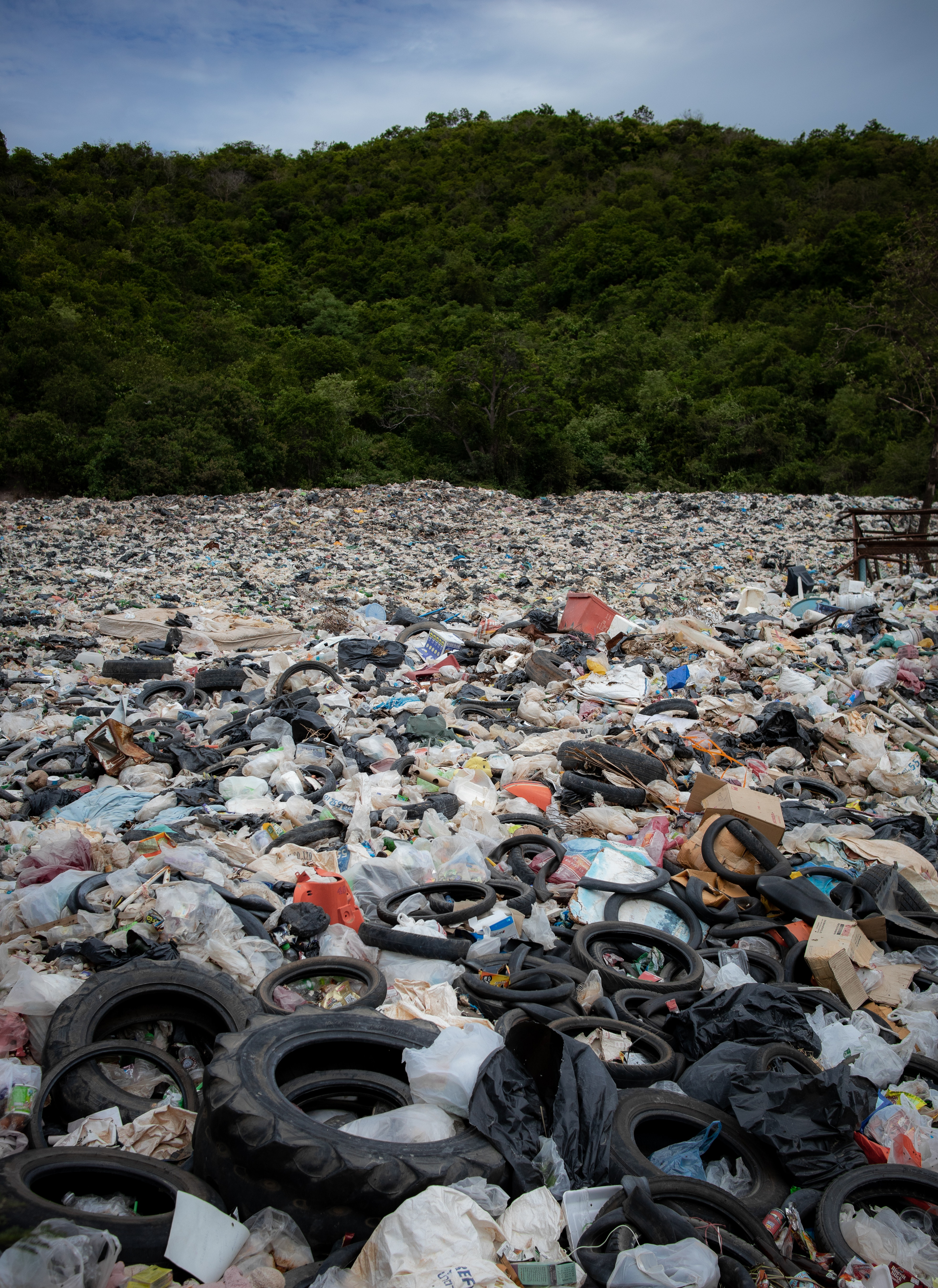YOU SHOULD REALLY WORRY ABOUT PLASTICS