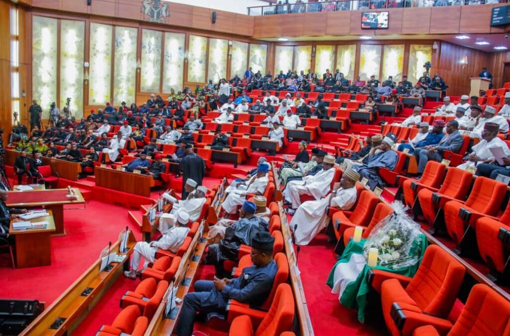 The Senate Clears The Air On Buhari's Nominee's Age Discrepancy