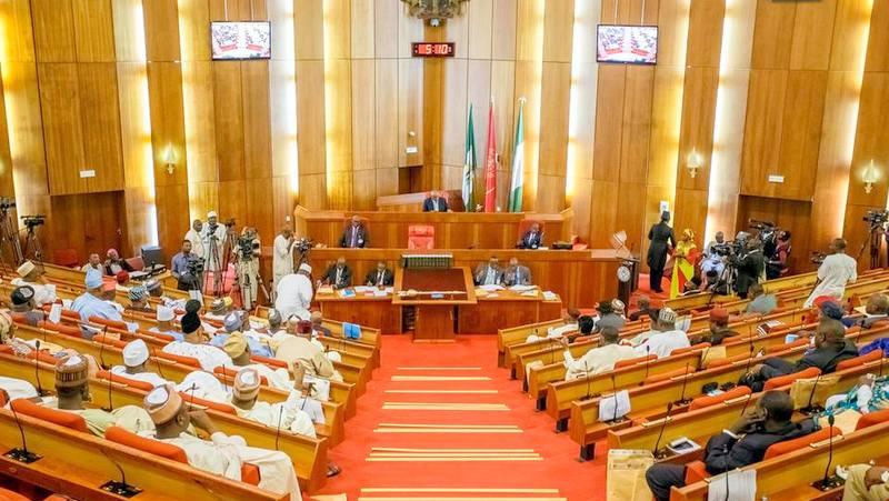Senators Confirm Buhari's Nominee, Whose Records Show That He Began School Before His Birth